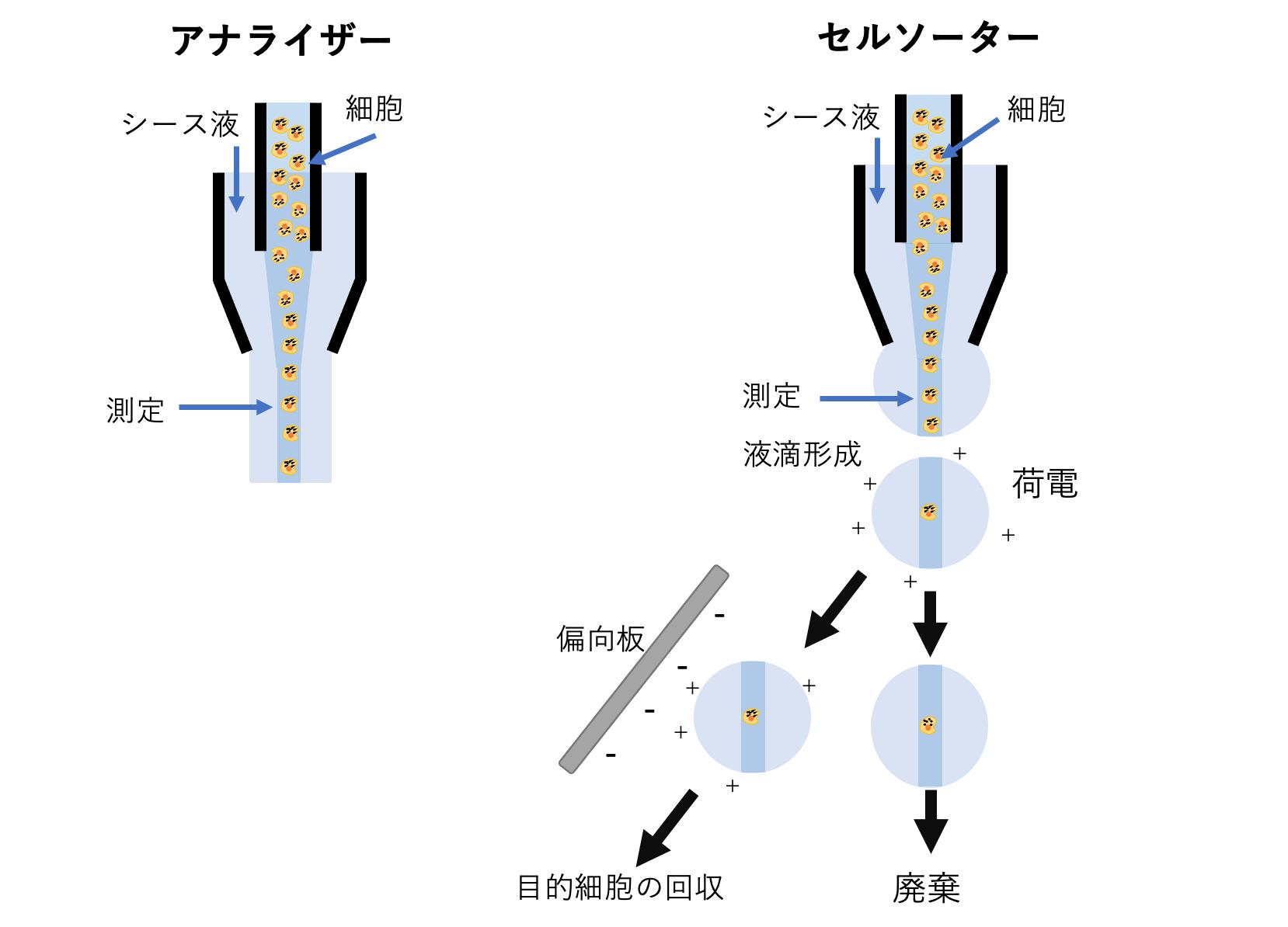 サイト メトリー フロー 多発性骨髄腫(1):多発性骨髄腫の病態とマルチカラー・フローサイトメトリー解析|Webセミナー|ベックマン・コールター ライフサイエンス